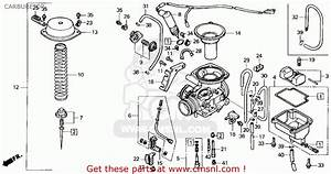 Honda Ch250 Elite 250 1989 Usa Carburetor