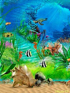 Animal Live Wallpaper Mobile9 - mobile9 forum gt and water collection of screensavers