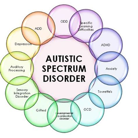 Diagram Of Adhd by Autistic Spectrum Disorder Diagram Autism And Asd