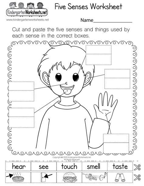 senses worksheet  kindergarten learning