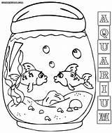 Aquarium Coloring Pages Fish Tank sketch template
