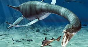Image Gallery long neck water dinosaur