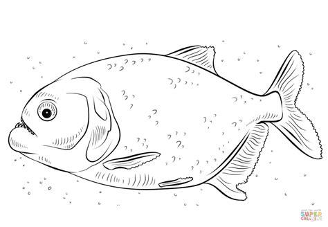 Kleurplaat Nooyer by Ausmalbild Piranhas Ausmalbilder Kostenlos Zum Ausdrucken