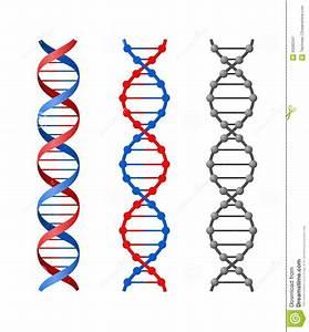 DNA stock illustration. Image of genetic, chemistry ...