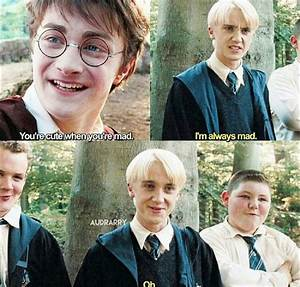 Is Harry Potter... Drarry