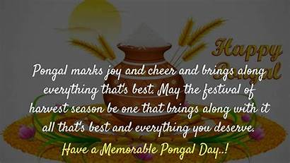 Pongal Wishes Happy Festival Greetings Blessings Messages