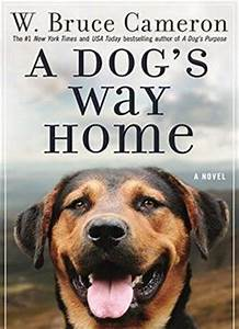 A Dog39s Way Home Download