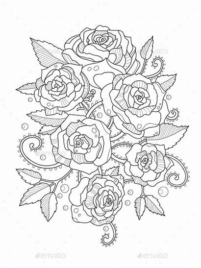 Coloring Pages Roses Adults Rose Books Flower