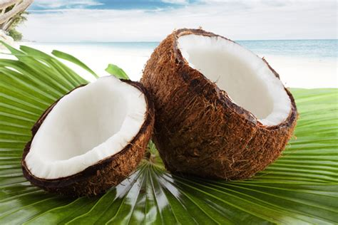 cuisiner gambas astuce de cyril lignac comment cuisiner la noix de coco