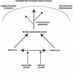 Fluid Geochemistry