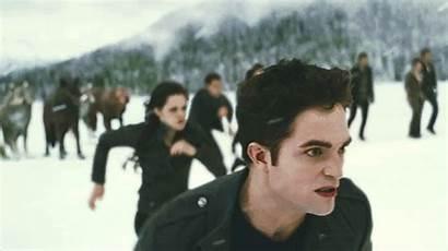 Twilight Breaking Dawn Saga Volturi Battle Cullens