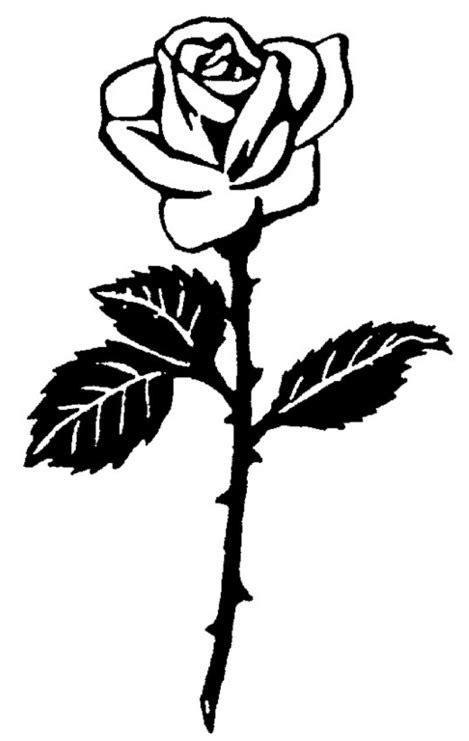 bilder von rosen und tauben fuer trauerdrucksachen