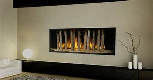 Contemporary Gas Fireplace Inserts Pictures : Warm ...