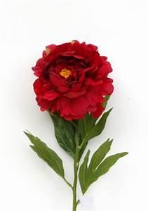 Langage Des Fleurs Pivoine : langage des pivoines rouges sur langage ~ Melissatoandfro.com Idées de Décoration