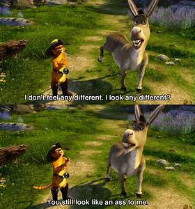 444 best images about Shrek on Pinterest | Shrek, Far away ...