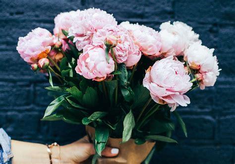 frasi i fiori frasi sui fiori le 25 pi 249 in inglese e italiano