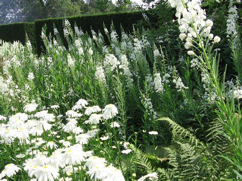 Garten Pflanzen by Pflanzenschutz