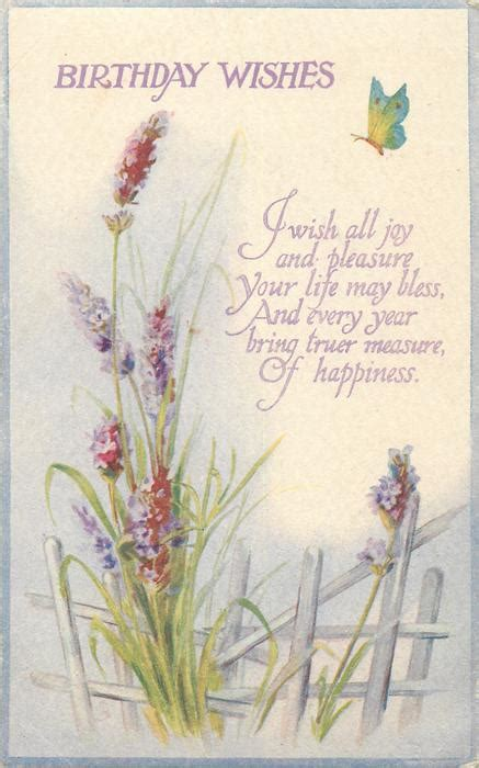birthday wishes lavender butterfly tuckdb postcards