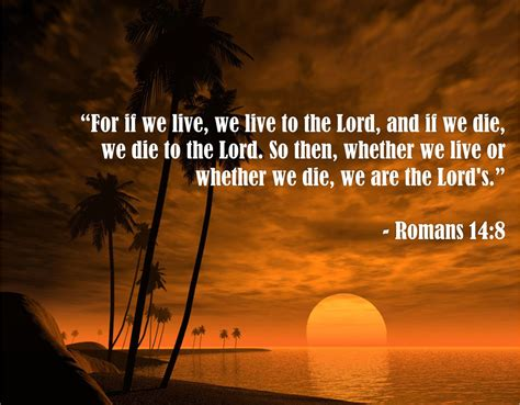 Bible Quotes About Comforting Bible Quotes About Quotesgram