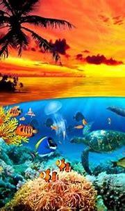 Under the sea HQ WALLPAPER - (#159450) | Animal wallpaper ...