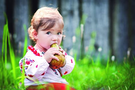 Baby Led Weaning The Natural Parent Magazine