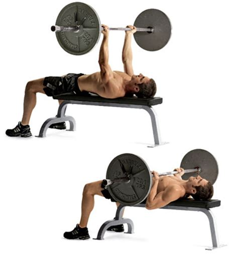 bench press for the 30 most powerful arm exercises for titanic toned arms