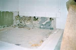 Barrierefreie Dusche Nachträglicher Einbau : der maurer aus hildesheim schnell preiswert sauber ~ Michelbontemps.com Haus und Dekorationen