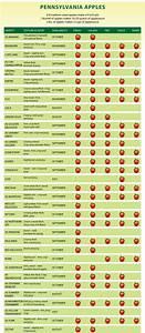 Pa Apple Varieties  U00ab Boyer Nurseries And Orchards  Inc