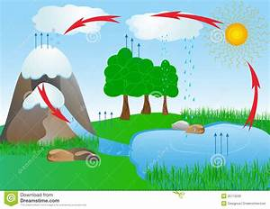 Cycle Water In Nature Environment  Oxygen Stock Vector