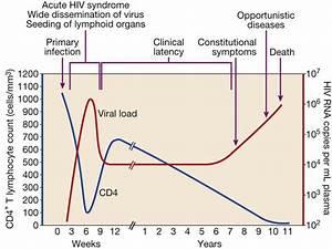 Gestation Period Of Hiv Virus