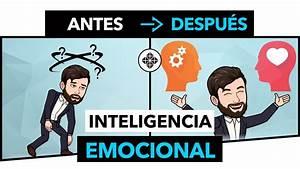 Inteligencia Emocional  U2022 C U00f3mo Controlar Las Emociones