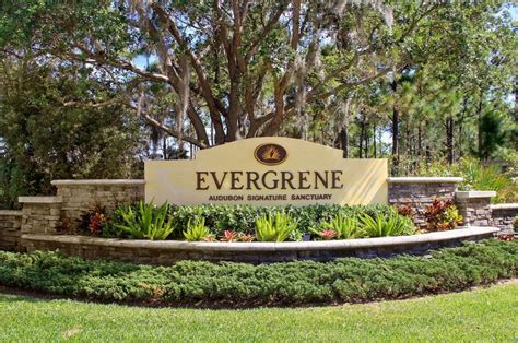 evergrene palm gardens evergreen homes palm