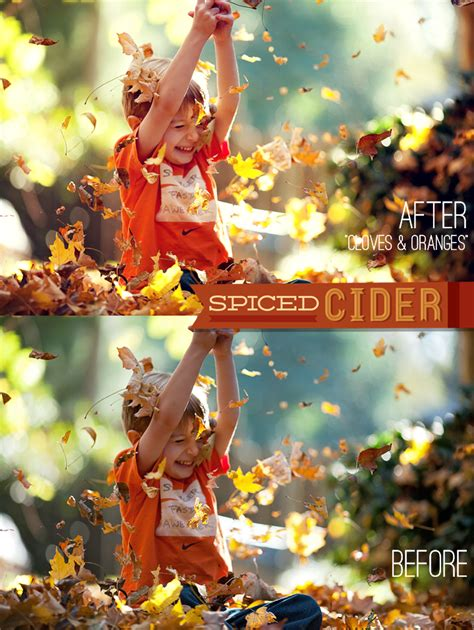 spiced cider photoshop elements actions  bellevue