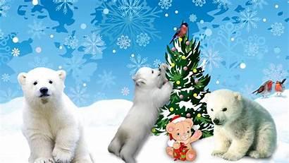 Winter Animated Christmas Snow Backgrounds Ipad Polar