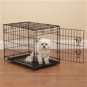 crate training how to choose an airline approved crate With small dog training crate