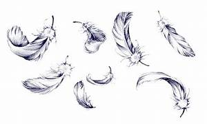 Dessin de plumes, Plumes and Dessins on Pinterest