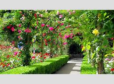 Amazing of Cool Maxresdefault For Beautiful Gardens #5929