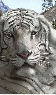 Siberian Tiger Digital Art by Daniel Hagerman