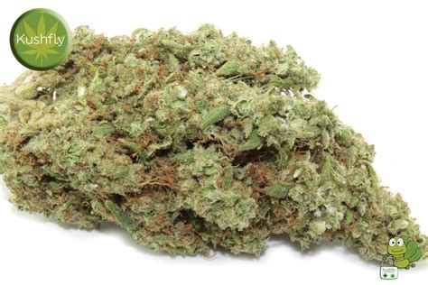Order Ak-47 Strain Medical Marijuana Delivery Or Shipping