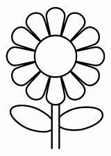 Flor Margaritas Dibujos Negro Blanco Flores Primavera Visitar Buscar Google sketch template
