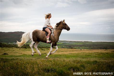 equine horse photography photographers based