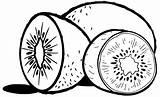 Kiwi Coloring Pages Fruit Preschoolers Fun sketch template