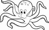 Coloring Octopus Pages Printable Outline Drawing Printables Octopuses Getdrawings sketch template