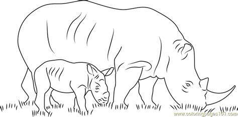 rhino   baby coloring page  rhinoceros