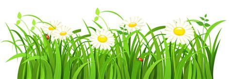 Grass Clipart Grass Vector Png Image Purepng Free Transparent Cc0