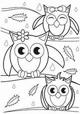 Coloring Owl Tulamama sketch template