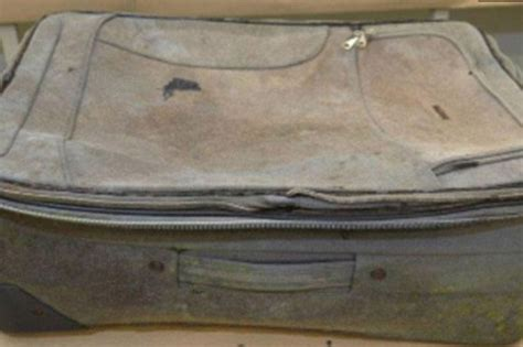 madeleine mccann case dead body   australia sparks