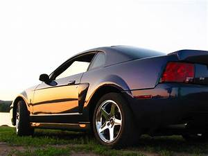 2004 Ford Mustang SVT Cobra - Pictures - CarGurus