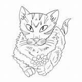 Coloring Cat Flower Ball Yarn Ilustracja Wektorowa Kot Drukuj Kwiatem Kolorowania Strona Abramova Ann sketch template