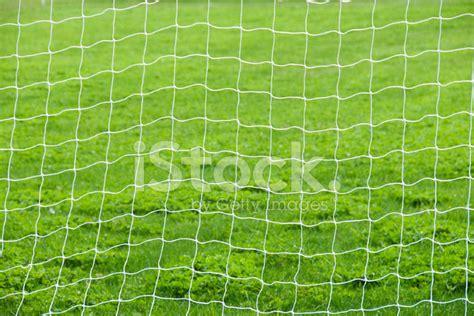 soccer net background stock  freeimagescom
